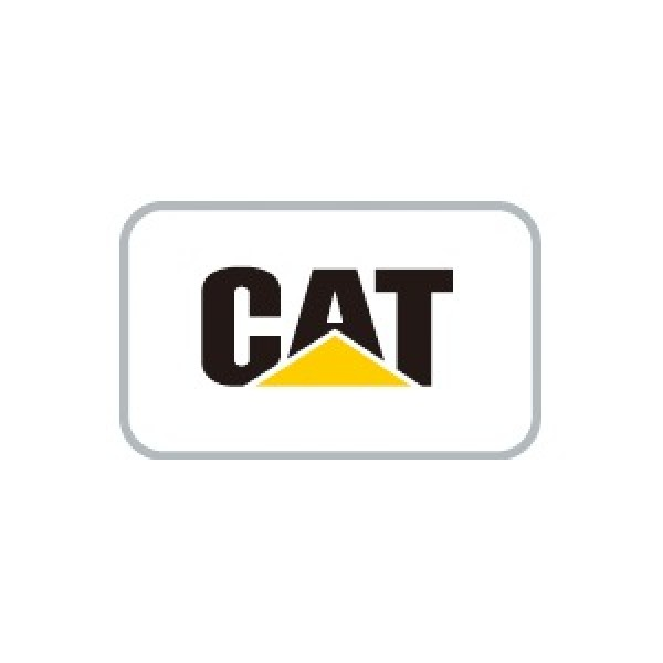 Caterpillar flash files